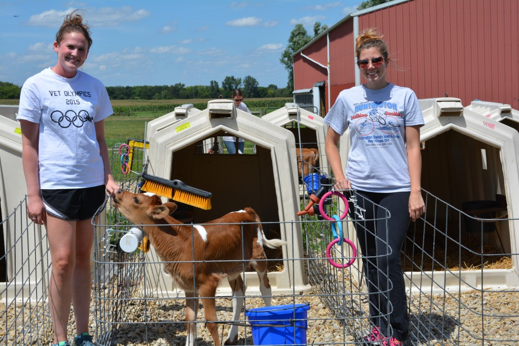 Second-year Ohio State veterinary students Hannah Manning (left) and Emily Cosentino (right) at Waterman Dairy Center in Columbus, Ohio, in August 2015.