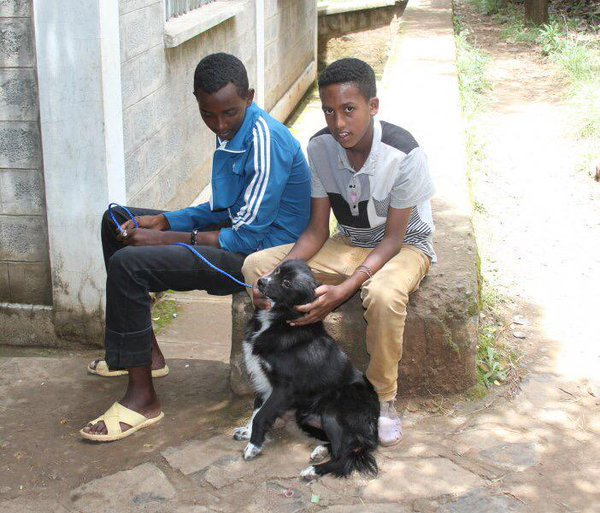 Two young locals relax with their dog, which often roams the community, in Gondar, Ethiopia. Photo taken in July 2014 by Dr. Wondwossen Gebreyes, professor of Veterinary Preventive Medicine and Director of Global Health Programs for The Ohio State University College of Veterinary Medicine